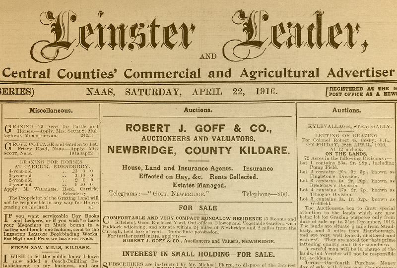 The Leinster Leader Editorials